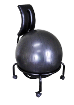 Health Mark Core Strengthening Smart Ball Posture Chair and Back Stretcher