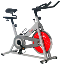 Sunny SF-B1001S Health & Fitness SILVER Indoor Cycling Bike 220 lbs Capacity